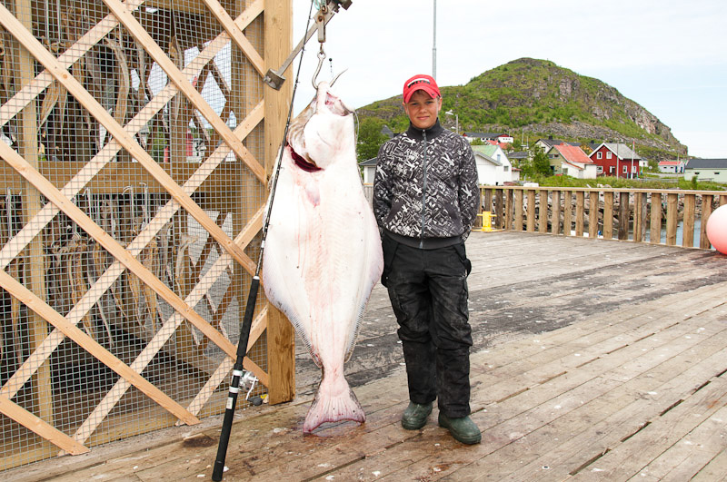 Young boy who got his 30kg+ trophy halibut
